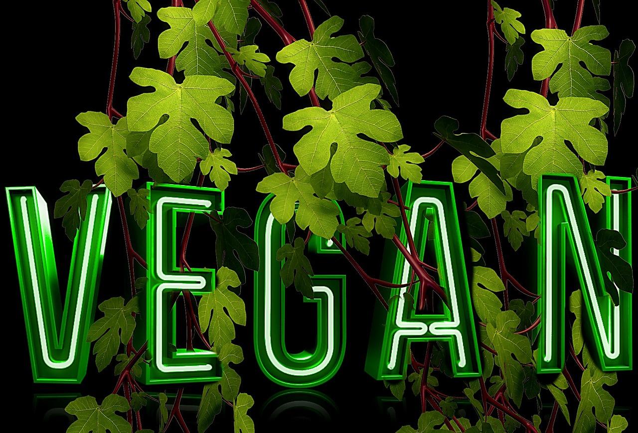 Vegan leben mit Dr. Gabriela Hoppe   Erfolg durch Ernährung   Ernährungsspezialistin & Heilpraktikerin - Bild by Pixabay