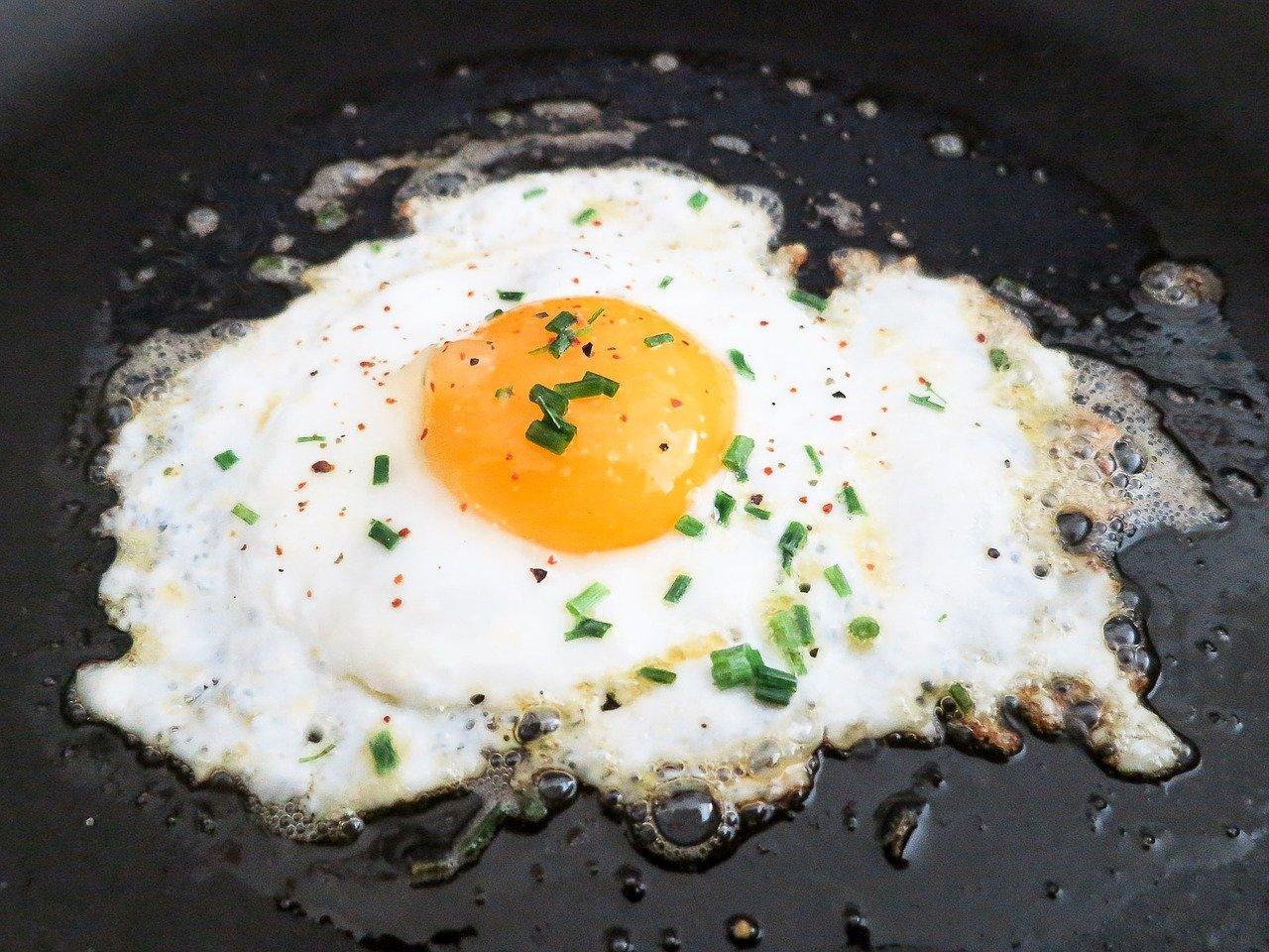 Das richtige Protein finden mit Dr. Gabriela Hoppe | Erfolg durch Ernährung | Deine Ernährungsspezialistin & Heilpraktik/Isernhagen - Bild by Pixabay