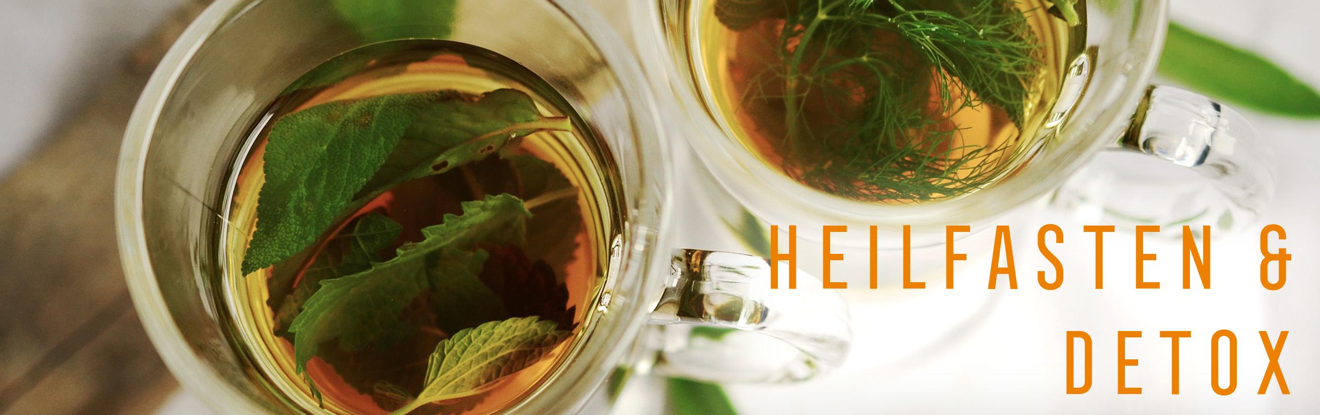 Heilfasten & Detox mit Dr. Gabriela Hoppe | Erfolg durch Ernährung | Ernährungsspezialistin & Heilpraktikerin - Hintergrundbild by Pixabay