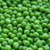 veganes Eiweißpulver - gesunde Ernährung mit Dr. Gabriela Hoppe | Erfolg durch Ernährung | Ernährungsspezialistin & Heilpraktikerin - Hintergrundbild by Pixabay