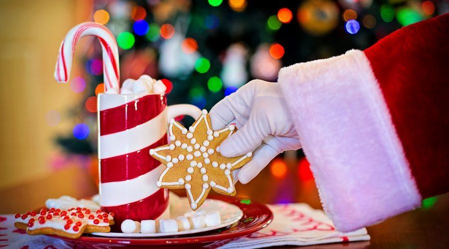 Gesund und schlank durch den Advent mit Dr. Gabriela Hoppe   Erfolg durch Ernährung - Hintergrundbild by Pixabay