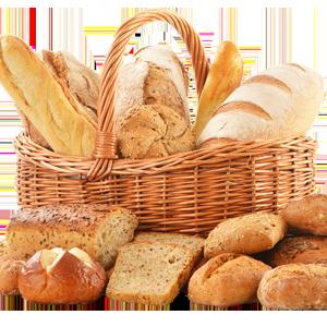 Brot & Alternativen mit Dr. Gabriela Hoppe | Erfolg durch Ernährung | Ernährungsspezialistin & Heilpraktikerin - Bild by Pixabay
