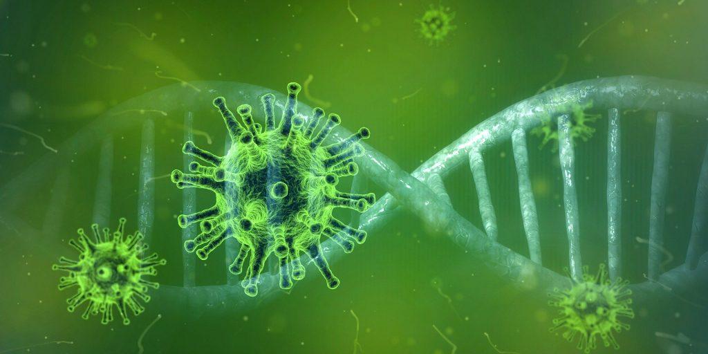 Immunsystem stärken mit Dr. Gabriela Hoppe | Erfolg durch Ernährung | Deine Ernährungsspezialistin & Heilpraktikerin in Hannover